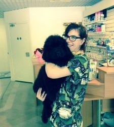 marine-assistante-veterinaire-a-issy-moulineaux/